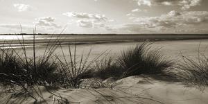 Rolling Dunes IV by Ben James