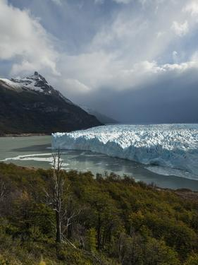 Afternoon Light on the Perito Moreno Glacier by Ben Pipe