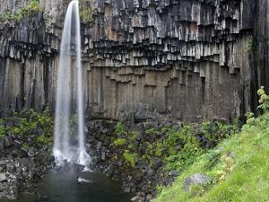 Svartifoss Waterfall, Skaftafell National Park, Iceland, Polar Regions by Ben Pipe