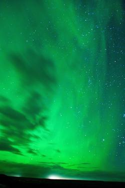 The Northern Lights (Aurora Borealis), Jokulsarlon, South Iceland, Polar Regions by Ben Pipe