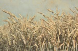 Gold Harvest by Ben Richard