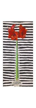 Amaryllis with Tie, 2000 by Ben Schonzeit