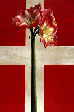 Danish Cross, 1998 by Ben Schonzeit