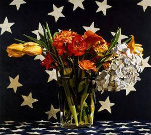 Stars, 1993 by Ben Schonzeit