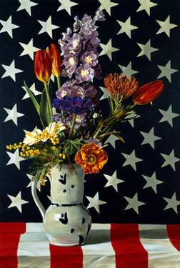 Stars & Stripes, 1998 by Ben Schonzeit