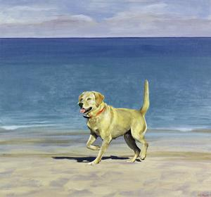 Yellow Lab. 1998 by Ben Schonzeit