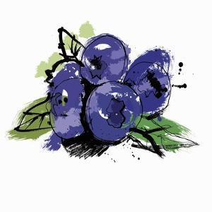 Blueberries by Ben Tallon