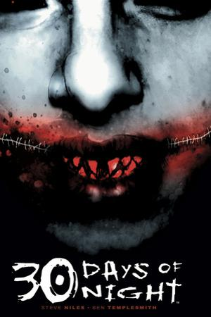30 Days of Night - Cover Art by Ben Templesmith