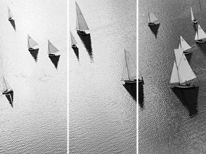 Broads Regatta - Noir by Ben Wood