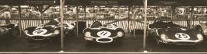 Jaguar D-Type, Tojeiro by Ben Wood