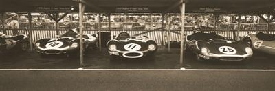 Jaguar D-Type / Tojeiro by Ben Wood