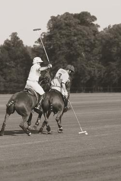 Polo In The Park II by Ben Wood