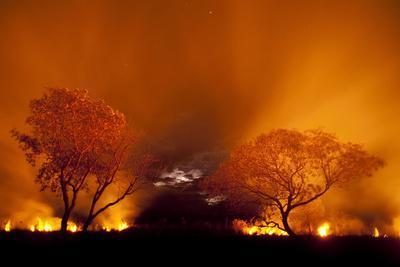 Grass Fire at Night in Pantanal, Brazil