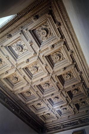 Wooden Ceiling, Work