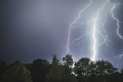 Lightning above a wood