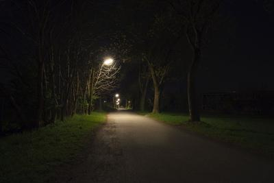 Park with lighting