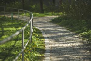 winding path by Benjamin Engler