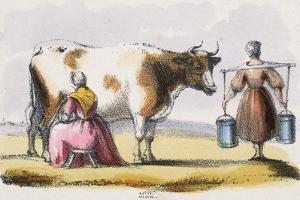 Milk, C1845 by Benjamin Waterhouse Hawkins