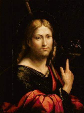 St. James the Greater by Benvenuto Tisi Da Garofalo