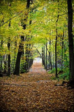 Berkshires Near Appalachian Trail Plastic Sign