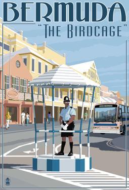 Bermuda - The Birdcage