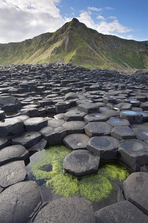 Giant'S Causeway, Looking In To Land, Causeway Coast