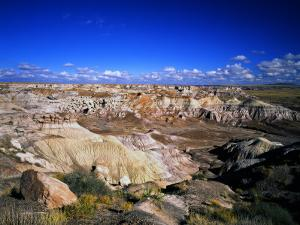 Blue Mesa Overlook, Petrified Forest National Park, Arizona, USA by Bernard Friel