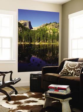 Hallet Peak Reflected in Dream Lake, Rocky Mountain National Park, Colorado, USA by Bernard Friel