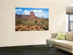 Mitten and Buttes at Mid-Day Navajo Tribal Park, Monument Valley, Arizona, USA by Bernard Friel