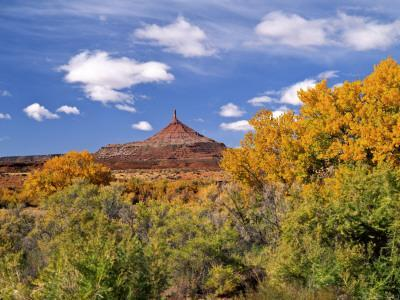 North Six Shooter Peak Framed With Yellow Fall Cottonwoods, Utah, USA