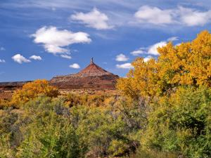 North Six Shooter Peak Framed With Yellow Fall Cottonwoods, Utah, USA by Bernard Friel