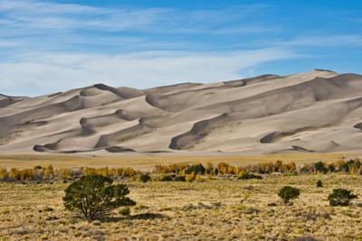 USA, Colorado, Alamosa, Great Sand Dunes National Park and Preserve by Bernard Friel