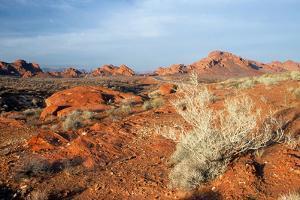USA, Nevada, Overton, Valley of Fire SP, Rainbow Vista sandstone. by Bernard Friel