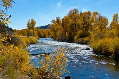USA, New Mexico, Fall along Rio Chama River. by Bernard Friel