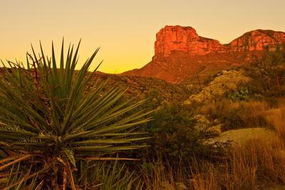 Usa. Texas, Guadalupe Mountain El Capitan Prominence