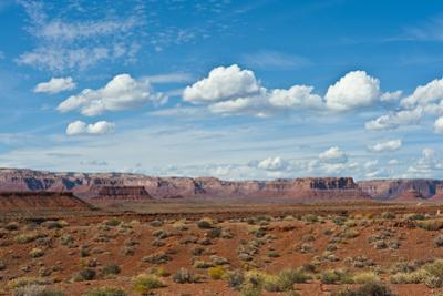 USA, Utah, Bluff, Valley of The Gods, Panorama, Bears Ears National Monument by Bernard Friel