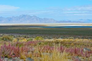 USA, Utah. Pony Express Road, Fish Springs National Wildlife Refuge scenic landscape views. by Bernard Friel