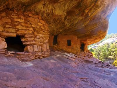 USA, Utah, Texas Flat Road, Mule Canyon Ruins, House of Fire by Bernard Friel
