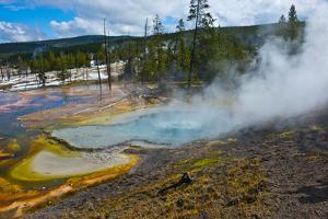 USA, Wyoming, Yellowstone National Park. Bubble Geyser by Bernard Friel