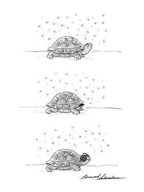Three-panel drawing of turtle. He walks outside in the snow; he puts his h? - New Yorker Cartoon by Bernard Schoenbaum