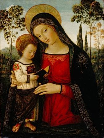Madonna and Child, c.1490-1495 by Bernardino di Betto Pinturicchio