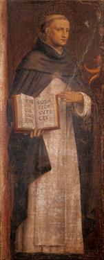 St. Thomas Aquinas by Bernardino Luini