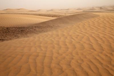 View of desert sand dunes with windblown sand, Sahara, Morocco, may by Bernd Rohrschneider