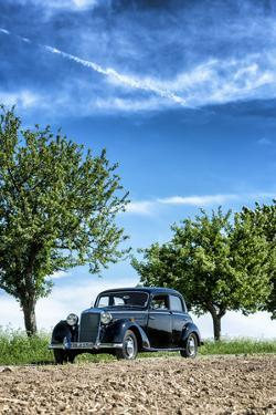 Vielbrunn, Hesse, Germany, Mercedes 170 Ds, Type W191, Year of Manufacture 1953 by Bernd Wittelsbach