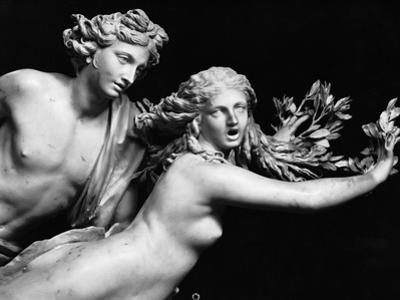 Bernini's Sculpture of Apollo & Daphne