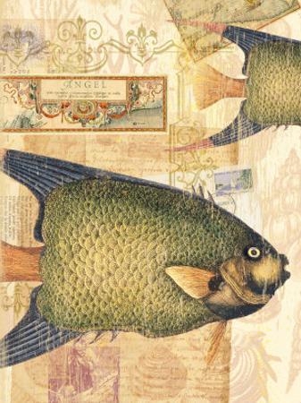Vintage Botanical Fish Print