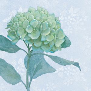 Blue Hydrangea I by Beth Grove