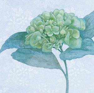 Blue Hydrangea II by Beth Grove