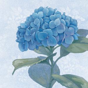 Blue Hydrangea IV by Beth Grove