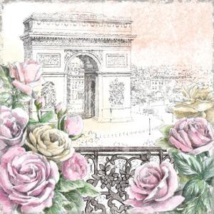 Paris Roses V by Beth Grove
